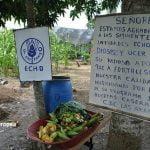 Se han librado del hambre   216 millones de personas