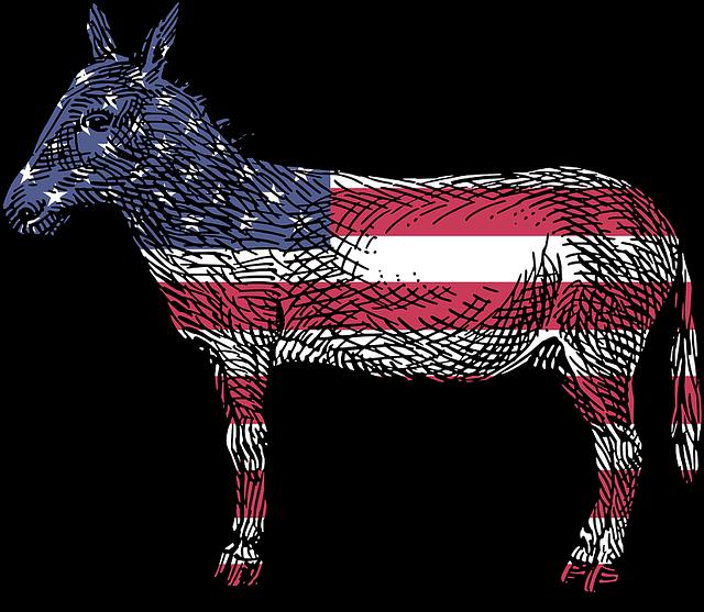 donkey-1445494_640