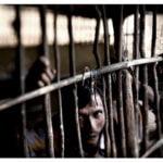 España tardaría 31 años para acoger a los refugiados comprometidos con la UE