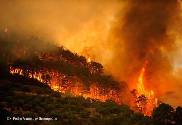 incendio-Valencia01